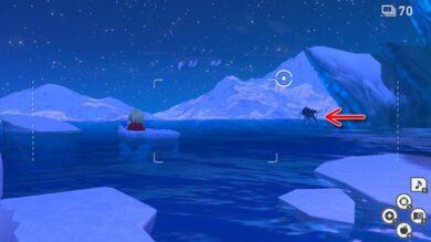 スイクンとグレイシアの出現場所と星1~4の写真の撮り方4